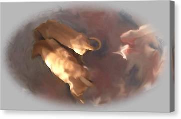 Doggie Brotherhood Canvas Print by Usha Shantharam