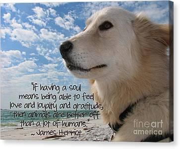 Doggie Soul Canvas Print by Peggy J Hughes