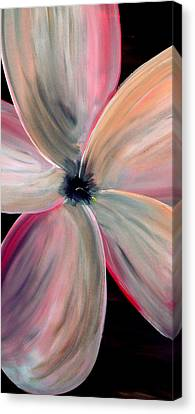 Dogwood Bloom Canvas Print by Mark Moore