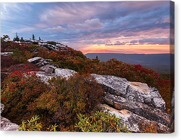 Dolly Sods October Sunrise Canvas Print by Joseph Rossbach