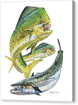 Dolphin Kingfish Canvas Print by Carey Chen