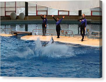 Dolphin Show - National Aquarium In Baltimore Md - 1212278 Canvas Print by DC Photographer