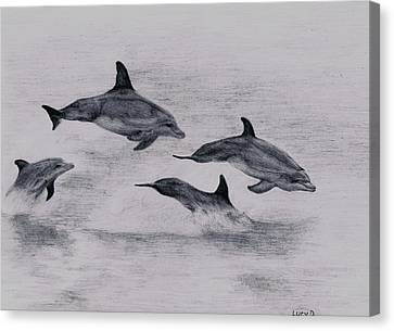Dolphins Canvas Print by Lucy D