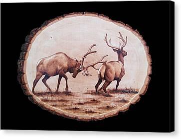 Dominance Canvas Print by Minisa Robinson