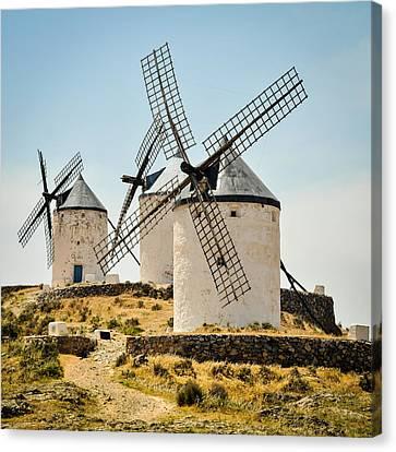 Don Quixote's Windmills Canvas Print by Tetyana Kokhanets