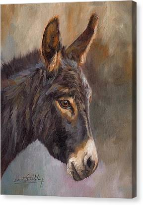 Donkey Canvas Print by David Stribbling