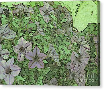 Donovan's  Garden Canvas Print by Mark Herman