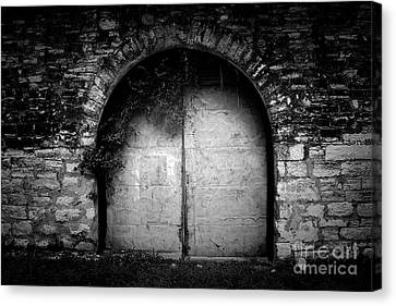 Doors To The Other Side Canvas Print by Trish Mistric
