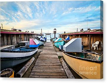 Dory Fishing Fleet Newport Beach California Canvas Print by Paul Velgos