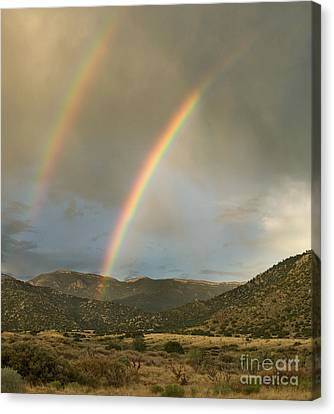Double Rainbow In Desert Canvas Print by Matt Tilghman