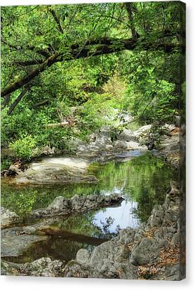 Down By The Creek Canvas Print by Donna Blackhall