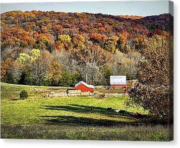 Down In The Valley Canvas Print by Cricket Hackmann