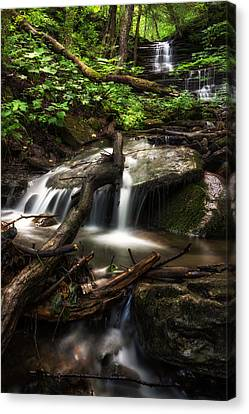 Downstream Canvas Print by Mark Papke