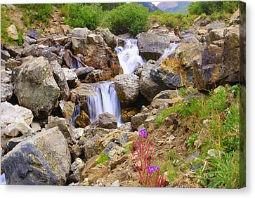 Downward Flow Canvas Print by Mike Schmidt