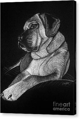 Dozer Canvas Print by Jennifer Jeffris