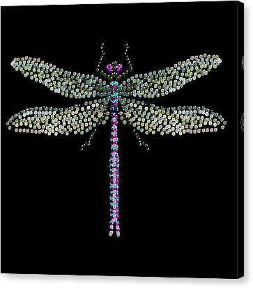 Dragonfly Bedazzled Canvas Print by R  Allen Swezey