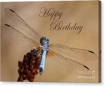 Dragonfly Birthday Card Canvas Print by Carol Groenen