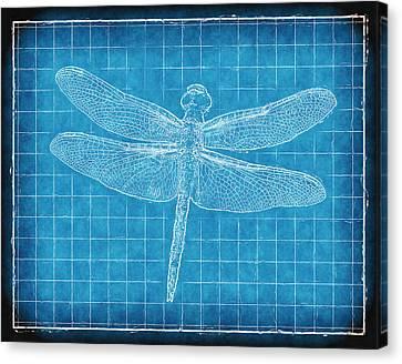 Dragonfly Blueprint Canvas Print by Robert Jensen