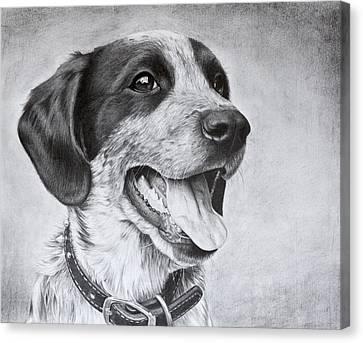 Drawing Of A Puppy Canvas Print by Karen Broemmelsick