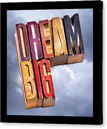 Dream Big Canvas Print by Donald  Erickson