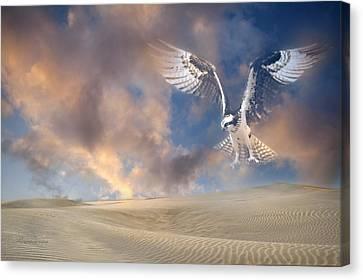 Dream Hawk Canvas Print by Georgiana Romanovna