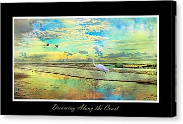 Dreaming Along The Coast -- Egret  Canvas Print by Betsy Knapp