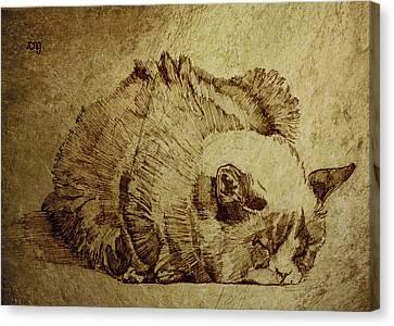Dreaming Cat Canvas Print by Daniel Yakubovich