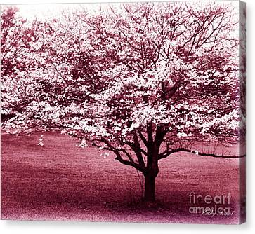 Dreamy Surreal Pink South Carolina Trees  Canvas Print by Kathy Fornal