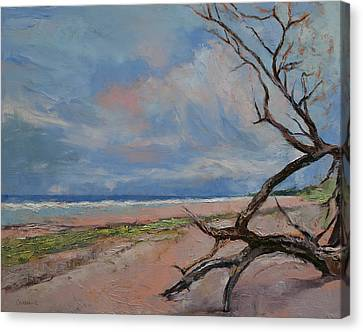 Driftwood Canvas Print by Michael Creese