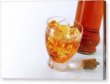 Drink On The Rocks Canvas Print by Carlos Caetano