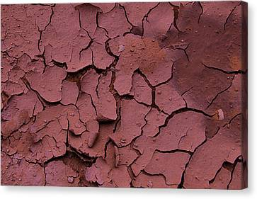 Dry Cracked Earth Canvas Print by Garry Gay