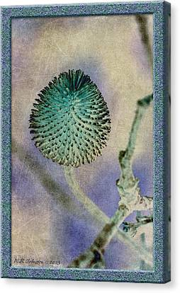 Dryweed Canvas Print by WB Johnston