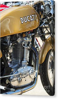 Ducati Desmo Mk 3  Canvas Print by Tim Gainey