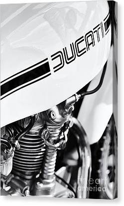 Ducati Desmo Motorcycle Canvas Print by Tim Gainey