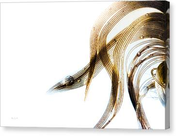 Duck Feather And Water Drops Canvas Print by Bob Orsillo