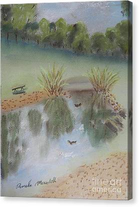 Duck Pond At Wollongong Uni Canvas Print by Pamela  Meredith