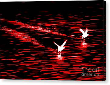 Duck Race Canvas Print by Az Jackson