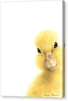 Duck Canvas Print by Veronica Minozzi