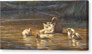 Ducks Canvas Print by Lucie Bilodeau