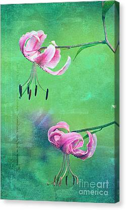 Duet - 9t01b Canvas Print by Variance Collections