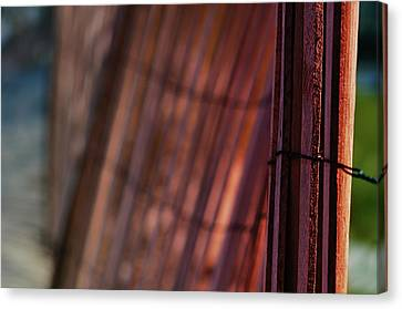 Dune Fence Canvas Print by Laura Fasulo