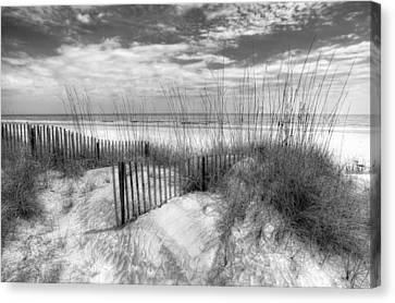 Dune Fences Canvas Print by Debra and Dave Vanderlaan