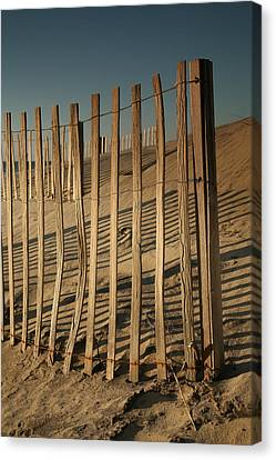 Dune Fences Early Morning II Canvas Print by Steven Ainsworth