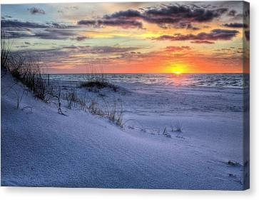 Dunes Of Gulf Islands National Seashore Canvas Print by JC Findley