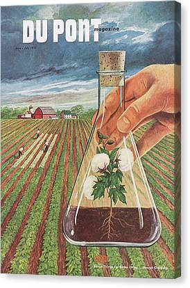 Dupont And Agricultural Research Canvas Print by Hagley Museum And Archive