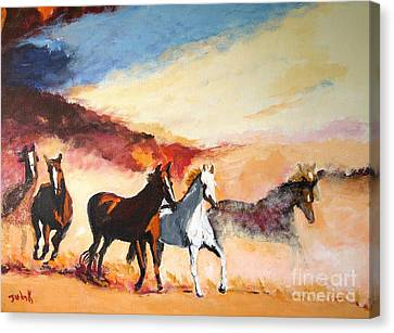 Dust In The Wind Canvas Print by Judy Kay