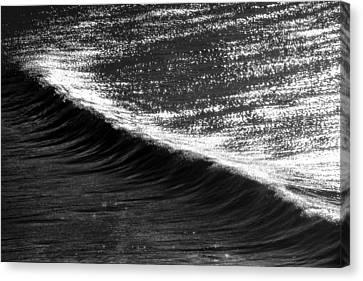 Dynamic Curve Canvas Print by Sean Davey