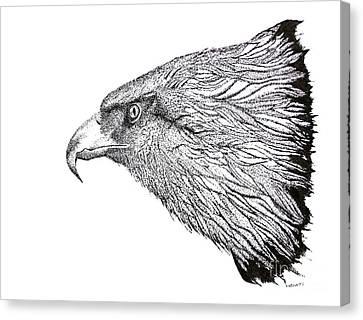 Eagle Head Drawing Canvas Print by Mario Perez
