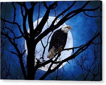 Eagle Night Canvas Print by Gary Smith