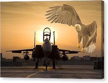 Eagles In Afghanistan Canvas Print by Tim Grams